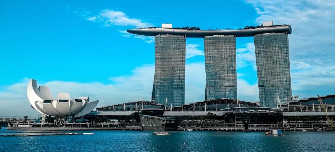 2020年AP新加坡报名流程出炉啦!-新加坡AP报名攻略