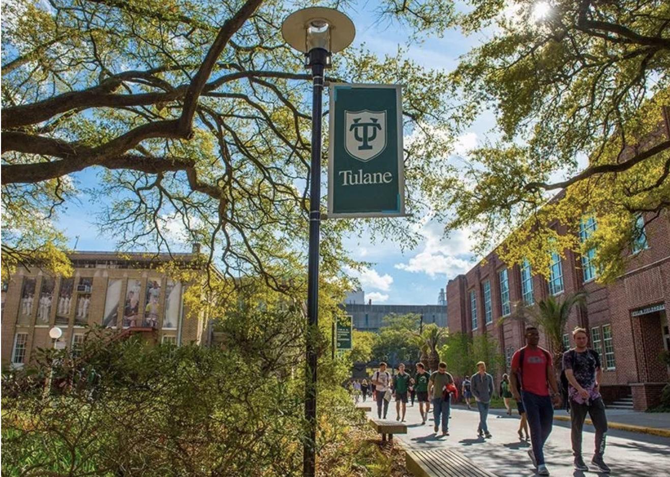 2020年杜兰大学早申放榜,Tulane University 早申录取了怎样的申请者?