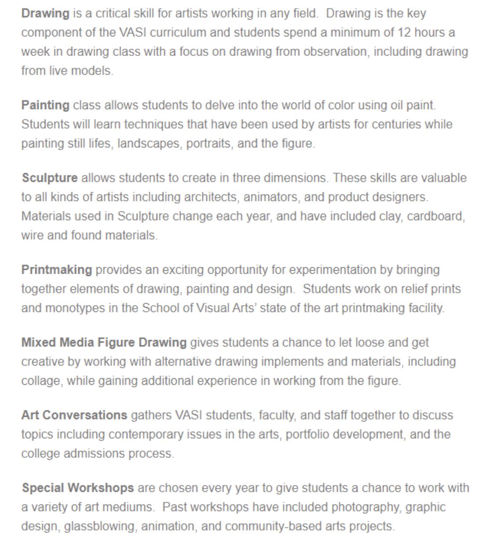 Visual Arts Summer Institute