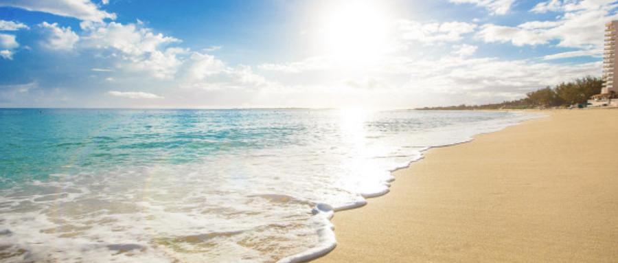 金色沙滩的诱惑:美国15所最靠近海的大学,你心动了吗?