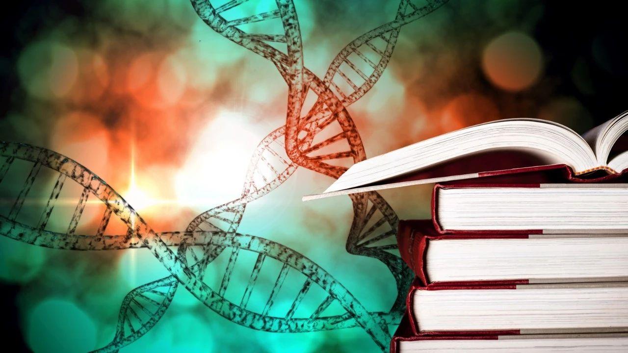 美国大学人类生物学专业怎么样?课程设置有哪些?就业前景怎么样?|美本专业详解